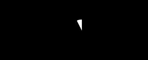 Dominnico logo